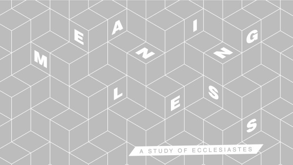 Series: Meaningless: a Teaching Series on Ecclesiastes