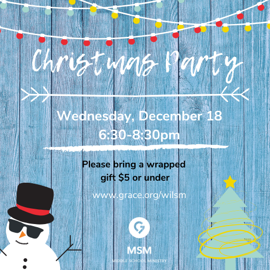WIL MSM Christmas Party